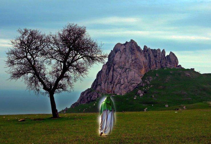 İmam Əli (ə) ağac və torpağı salamlayanda, nə baş verdi?